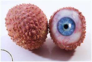 eyechee anyone?