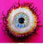 Fruit-eyeeee