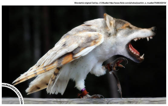 Wolfowl
