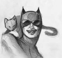 Catwoman Sketch by RobtheDoodler