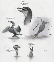 The Goofy Cormorant by RobtheDoodler
