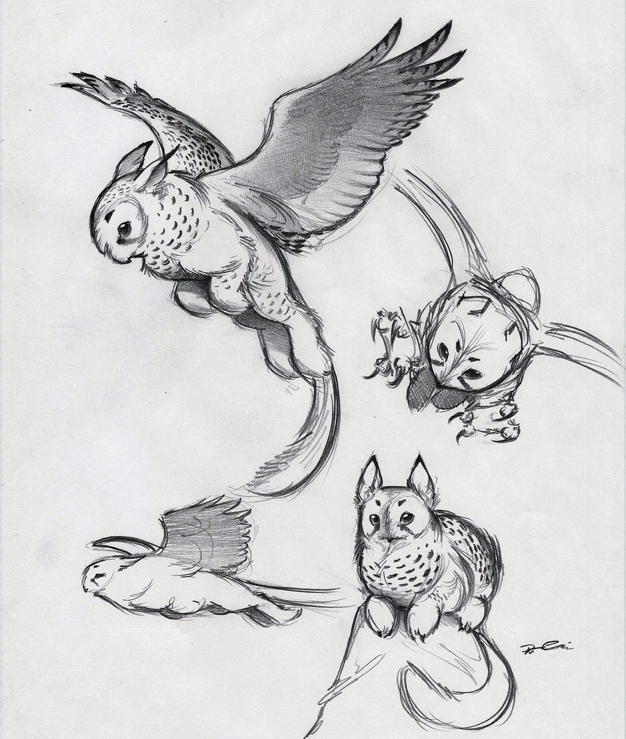 And Yet More Owl Griffin By Robthedoodler Traditional Art Drawings