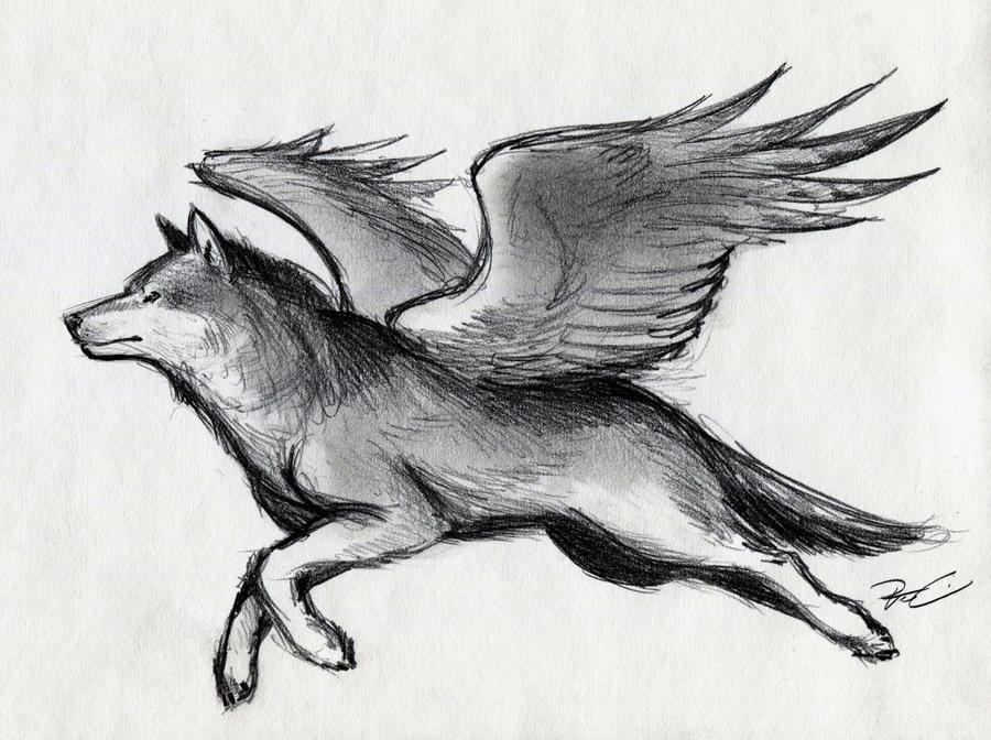 Winged Wolf by RobtheDoodler on DeviantArt