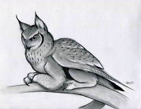 Eagle Owl Griffin