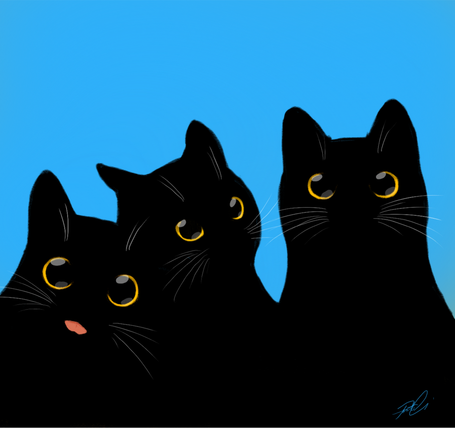 Black Cats by RobtheDoodler