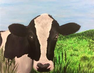 Mimi's Cow
