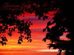 Sunset - Photography 2