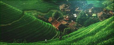Asia by Eliezerlopez