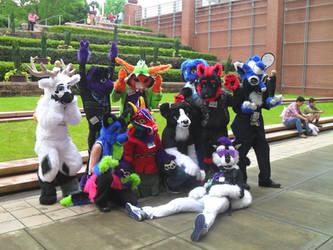 Nashicon 2015 Fursuit Group Photo by Que-Sera-Sera