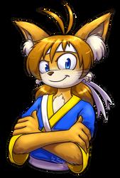 Flash COMMISSION by Tanita-sama