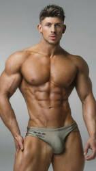 Fitness Stallion