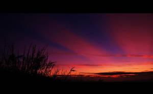 Skyline by reijinz
