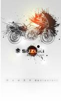 Suzuki V-Strom by NewX4