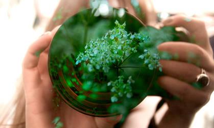 Green Lense