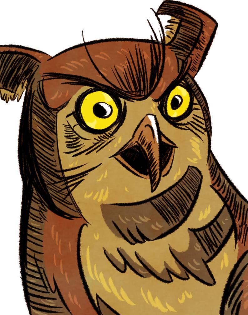 Buho Enojon - Grumpy Owl
