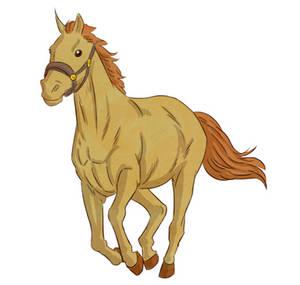 Caballito - Little Horse