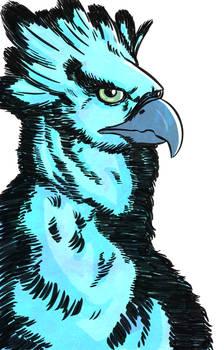 Aguila Arpia Digital - Harpy Eagle Digital