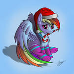 Christmas Dashie - Request by Duskie-06
