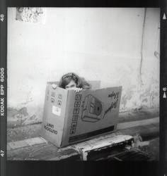 Living in a Box by avivi