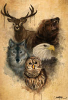 Native animals by Ejlen