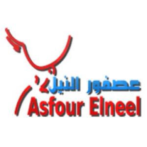 AsfourElneel's Profile Picture