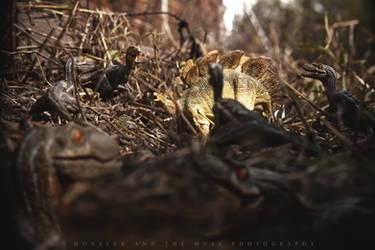 Pack Hunters by Garudas