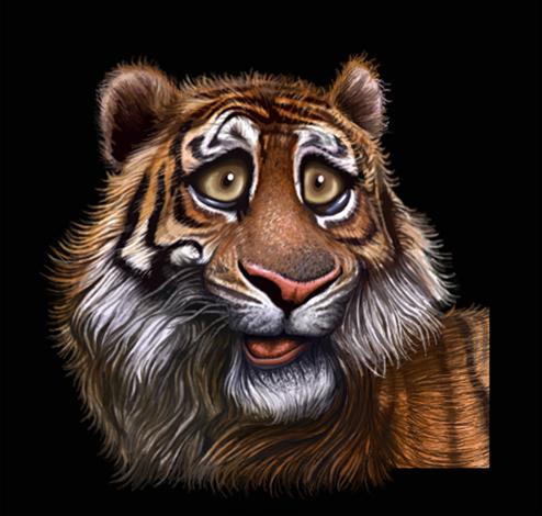 CARICATURA TIGRE by FRMONROY on DeviantArt