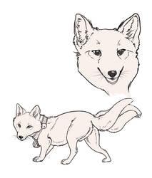 Fox doodles by FoxedFerret