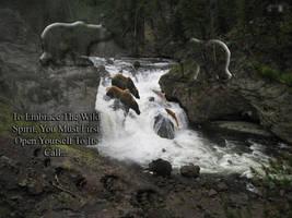 Spirits of  The Wild Calling...