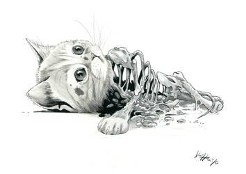 Zombie Chaton by Jimmy-Rogon