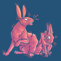 Rabbit Brothers