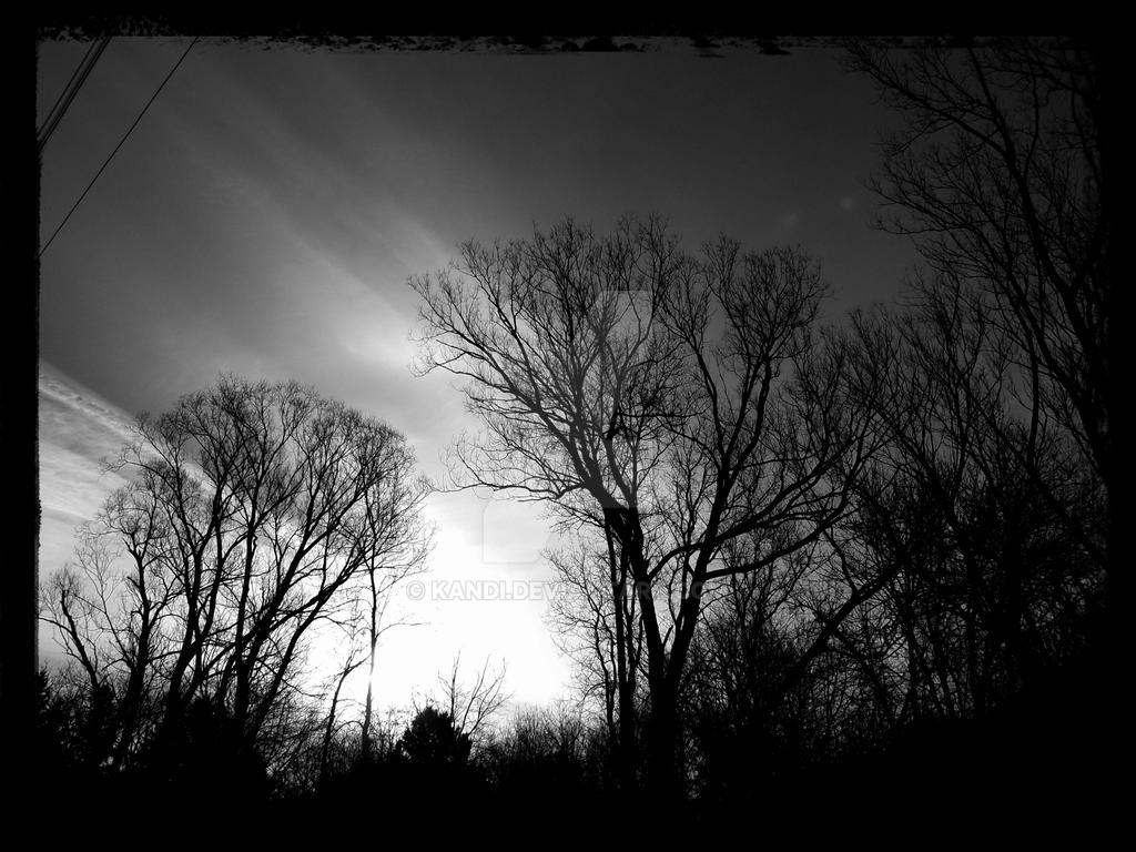Black and White Sky by kandi