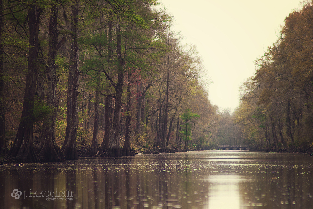 Cypress Canal by Pikkochan