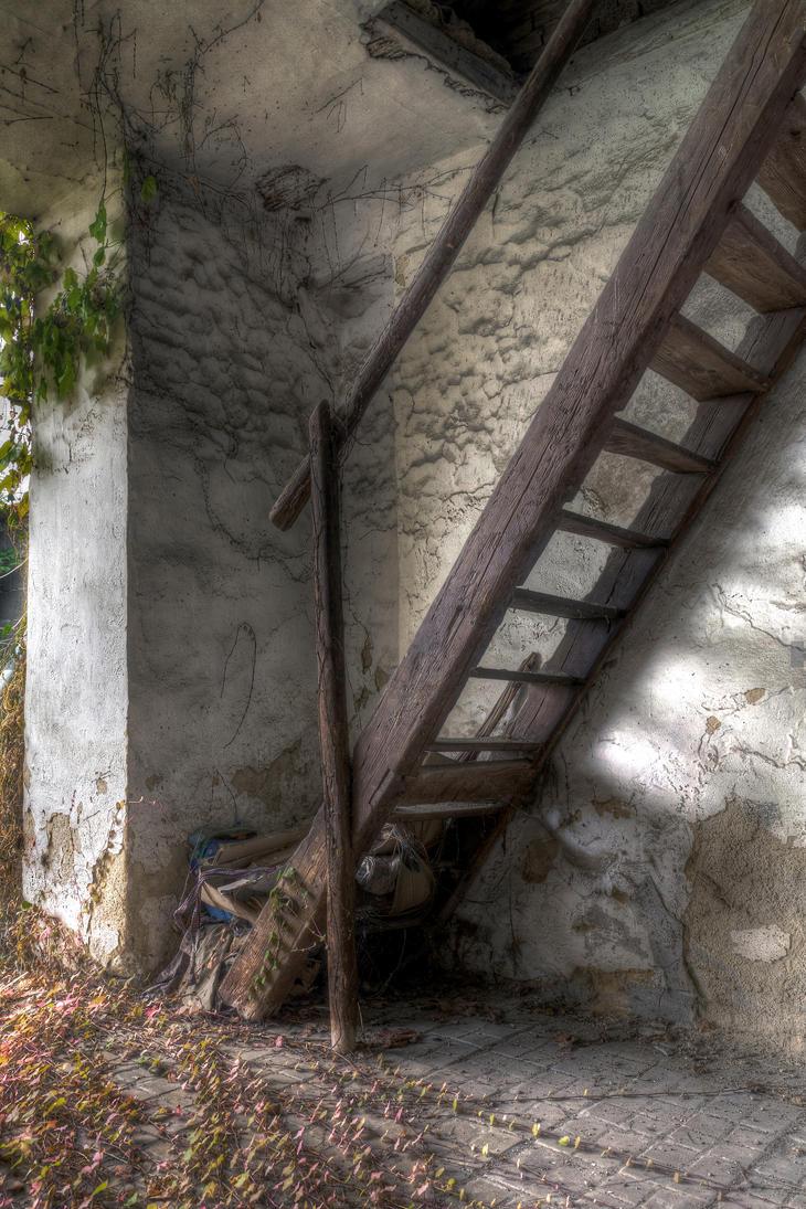 Loft Ladder by woisvogi
