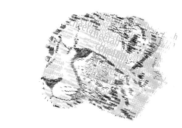 Typographic Cheetah