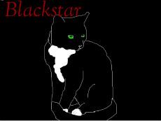 My Blackstar by Greymoon-Skyshimmer
