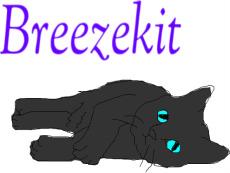 Breezekit by Greymoon-Skyshimmer