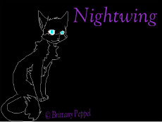 Nightwing by Greymoon-Skyshimmer