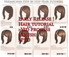 Full hair tutorial package release ! by sakimichan