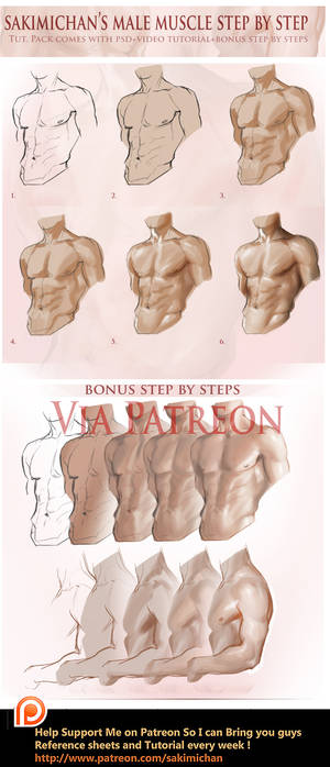 Male muscle step by step tutorial