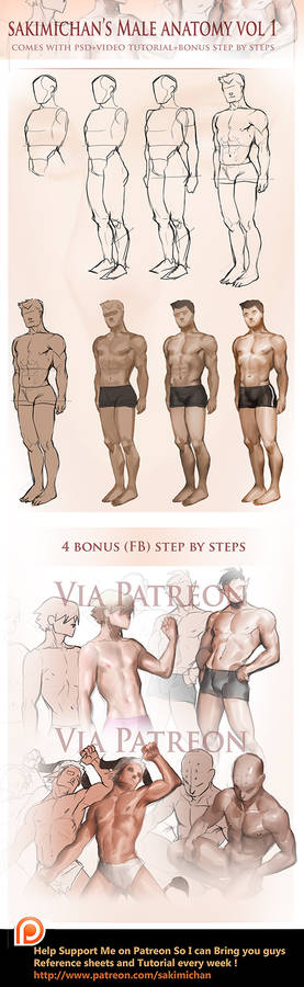Male Fullbody step by step tutorial