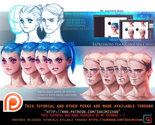 Stylized Expression tutorial pack .Promo. by sakimichan