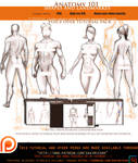 Anatomy 101 Shapes/landmarke .Voice over tutorial.