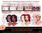 Skin tone Video tutorial pack .promo.