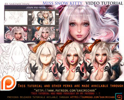 Miss Snow Kitty video tutorial pack.promo.
