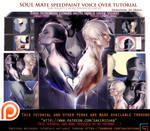 Soul Mate speedpaint voice over lesson .promo.