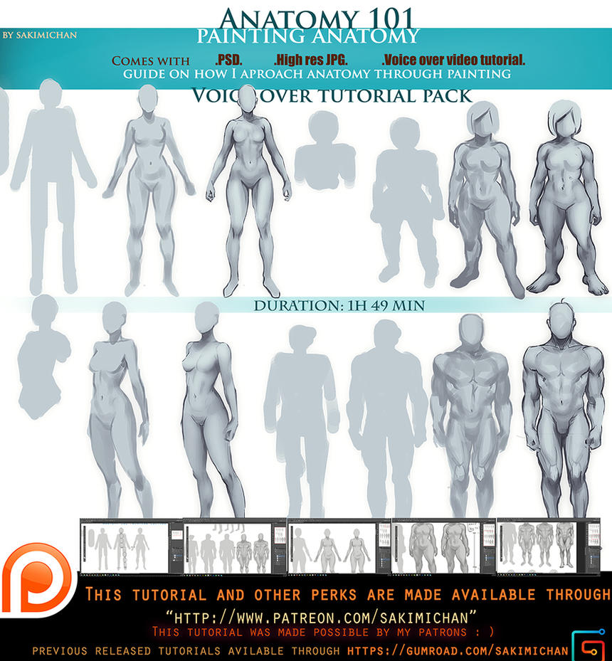 painting anatomy voice over tutorial.promo. by sakimichan on DeviantArt