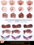Nose and eyes variation steps tutorial.promo.