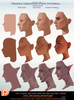 Profile variation steps tutorial pack .promo.