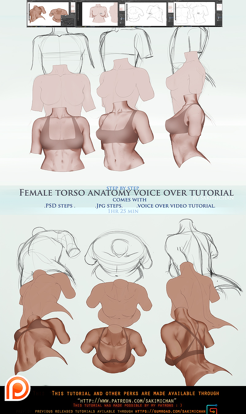 Digital Painting Line Art : Female torso anatomy voice over promo by sakimichan on